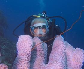 TIP: Vroege Vogels TV zendt dinsdag 3 juni een grote special uit over de natuur op Bonaire, Saba en St. Eustatius.